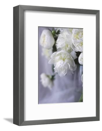 White Peonies in a Vase-Anna Miller-Framed Photographic Print