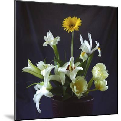Flower Bouquet-Anna Miller-Mounted Photographic Print