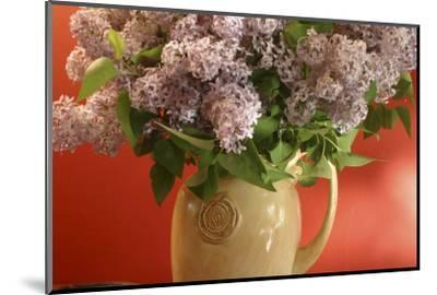 Lilac Flowers in Vase-Anna Miller-Mounted Photographic Print