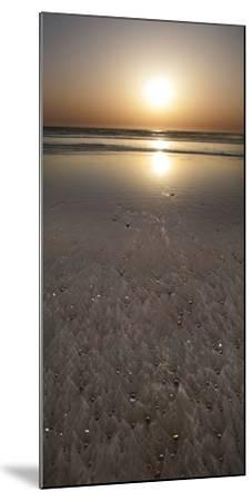 Morro Bay Beach Sunset-Anna Miller-Mounted Photographic Print