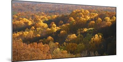 Autumn vista in Brown County State Park, Indiana, USA-Anna Miller-Mounted Photographic Print