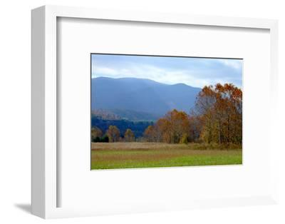 Autumn in Cades Cove, Smoky Mountains National Park, Tennessee, USA-Anna Miller-Framed Photographic Print