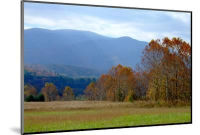 Autumn in Cades Cove, Smoky Mountains National Park, Tennessee, USA-Anna Miller-Mounted Photographic Print