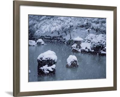 Maruyama Park--Framed Photographic Print