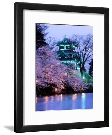 Cherry Blossoms--Framed Photographic Print