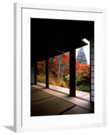 Kozanji Temple--Framed Photographic Print