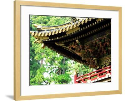 Tosho-Gu Shrine--Framed Photographic Print