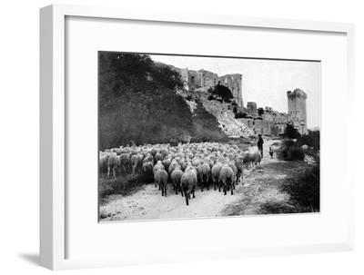 A Herd Passes in Front-Brothers Seeberger-Framed Photographic Print