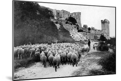 A Herd Passes in Front-Brothers Seeberger-Mounted Photographic Print