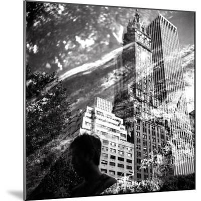Central Park Double-Evan Morris Cohen-Mounted Photographic Print