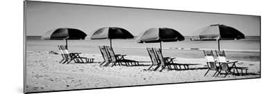 Beach Reunion-Gail Peck-Mounted Photographic Print