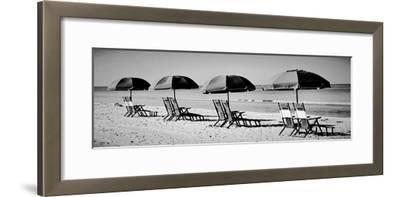 Beach Reunion-Gail Peck-Framed Photographic Print