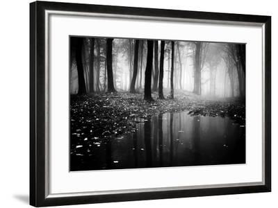 Woods-PhotoINC-Framed Photographic Print