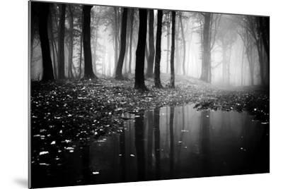 Woods-PhotoINC-Mounted Photographic Print