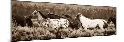 Sepia Horses-Gary Crandall-Mounted Photographic Print