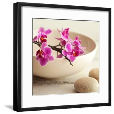 Zen Pebble--Framed Photographic Print