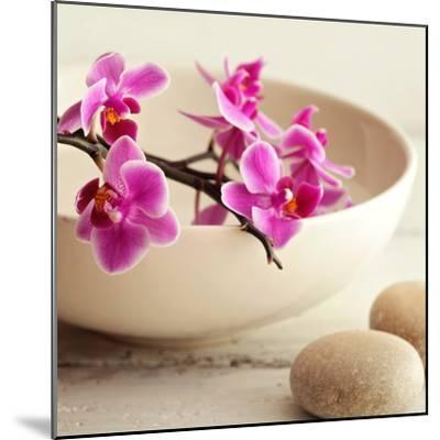 Zen Pebble--Mounted Photographic Print