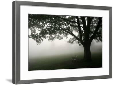 The Bench-PhotoINC-Framed Photographic Print