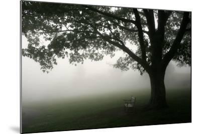 The Bench-PhotoINC-Mounted Photographic Print