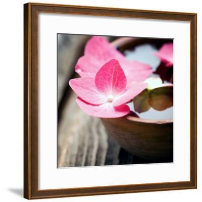 Zen Bowl--Framed Photographic Print