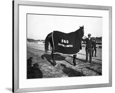 B&O Capitol Limited Horse--Framed Photographic Print