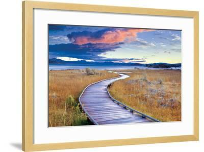 Pathway to Mono Lake-Dennis Frates-Framed Photographic Print