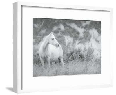 Misty Mare Crop-Lisa Cueman-Framed Photographic Print
