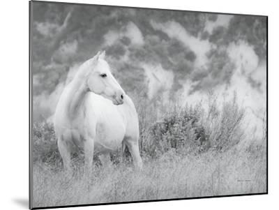 Misty Mare Crop-Lisa Cueman-Mounted Photographic Print