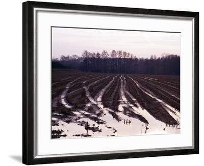 Moyland - Niederrhein - Germany-Florian Monheim/Bildarchiv-Monheim-Framed Photographic Print