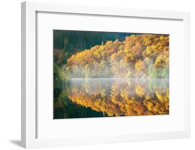 Autumn Fog-Dennis Frates-Framed Photographic Print