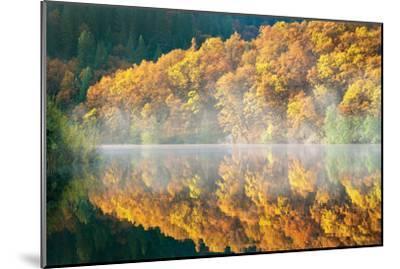 Autumn Fog-Dennis Frates-Mounted Photographic Print
