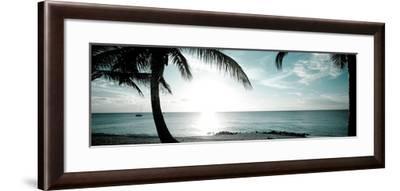 Cool Bimini II-Susan Bryant-Framed Photographic Print