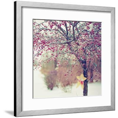 Winter Berries II-Kelly Poynter-Framed Photographic Print