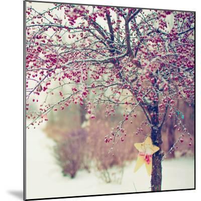 Winter Berries II-Kelly Poynter-Mounted Photographic Print