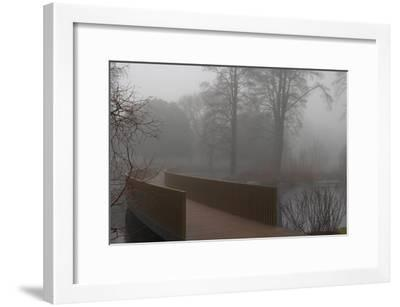 Royal Botanic Gardens, Kew, London. the Sackler Crossing in Fog with Winter Trees-Richard Bryant-Framed Photographic Print