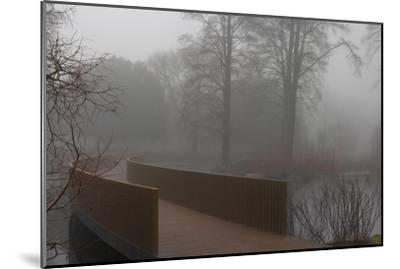 Royal Botanic Gardens, Kew, London. the Sackler Crossing in Fog with Winter Trees-Richard Bryant-Mounted Photographic Print