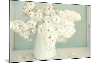 Gorgeous Whites-Sarah Gardner-Mounted Photographic Print
