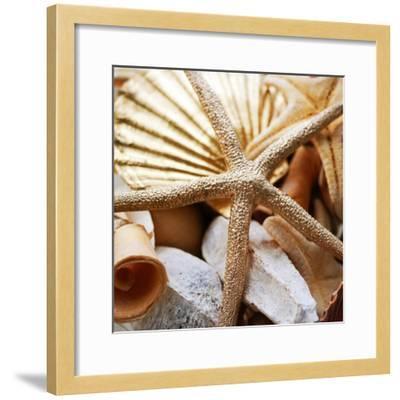 Gold Starfish II-Susan Bryant-Framed Photographic Print