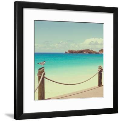 On Deck II-Susan Bryant-Framed Photographic Print