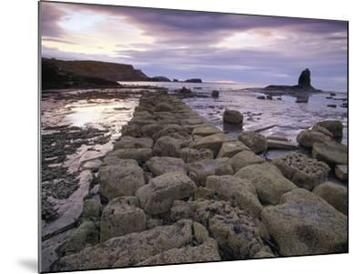 Saltwick Bay Is South of Whitby and the Distinctively Shaped Black Nab Rock- LatitudeStock-Mounted Photographic Print