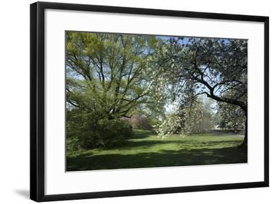 Royal Botanical Gardens, Kew, London. Spring-Richard Bryant-Framed Photographic Print