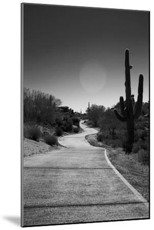 Cart Path on Desert Golf Course Arizona--Mounted Photo