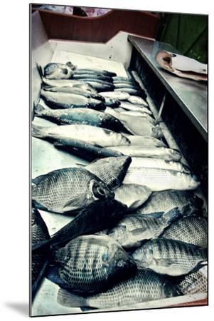 Tokyo Fish Market--Mounted Photo