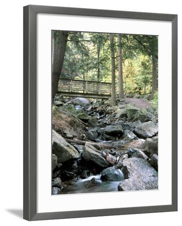 Bridge over Waterfall in a Forest--Framed Photographic Print