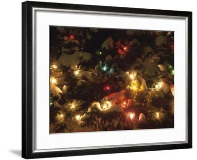 Christmas Lights on Snowy Evergreen Branches--Framed Photographic Print