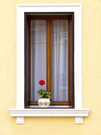 Blooming Red Geranium on Beautiful White Wooden Windowsill--Framed Photographic Print
