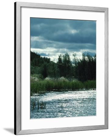 Serene Lake and Forest--Framed Photographic Print
