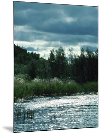 Serene Lake and Forest--Mounted Photographic Print