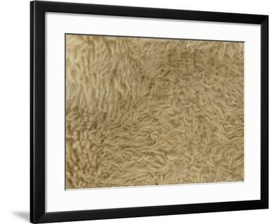 Close-up of Soft Furry Woolen Texture--Framed Photographic Print