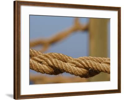 Braided Nautical Rope--Framed Photographic Print